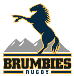 Brumbies logo copy