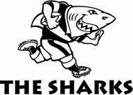 sharks SR copy copy